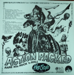 LP/ VA  - ✫✫ ACTION PACKED ✫✫ Rare 50s Rock'n'Roll (Wendi Records)